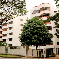 En Bloc Sale of Hollandia