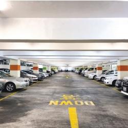 第一太平戴維斯獲委託為獨家代理招標出售大圍美松苑商舖及停車場