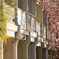 Spotlight on Leichhardt as Vacancy Rate Remains Tight